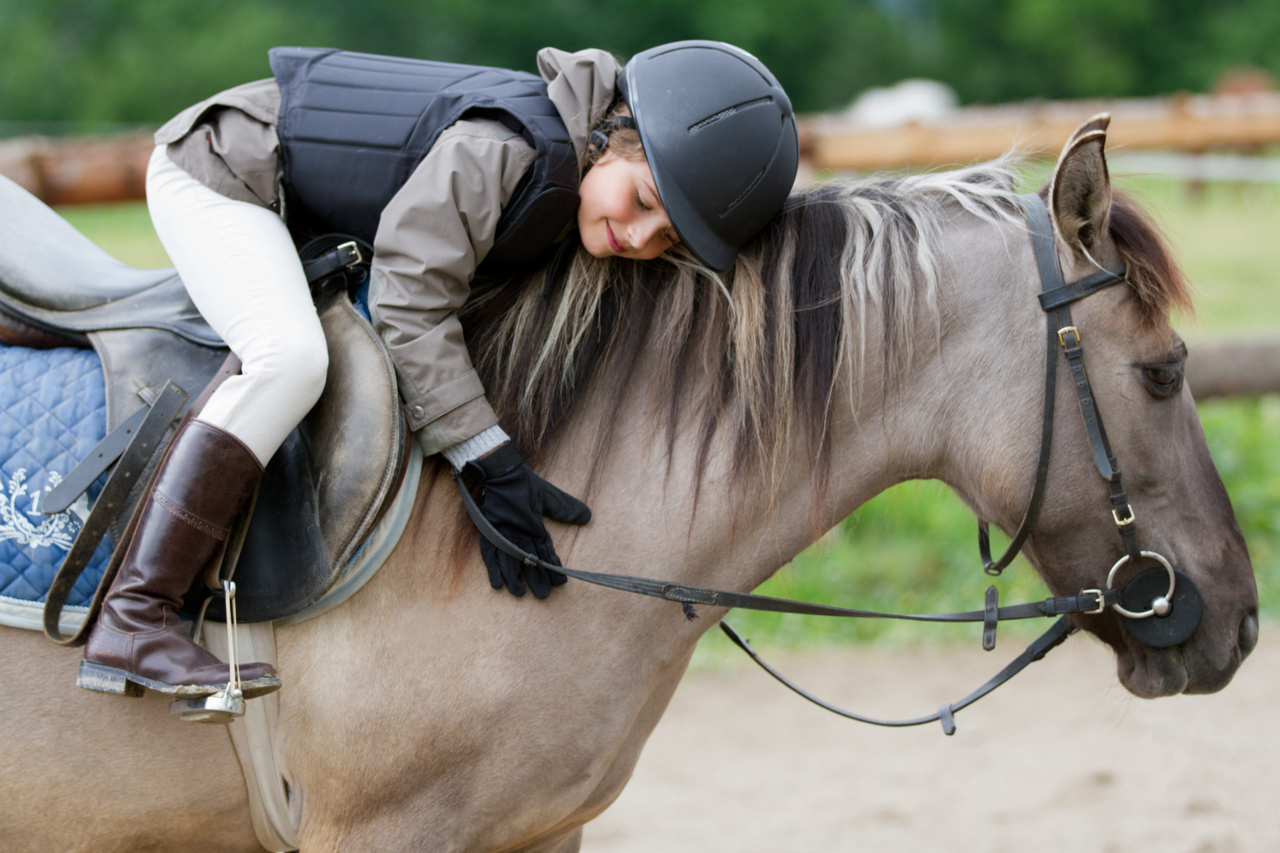 Horse riding – lovely equestrian on a horse